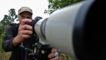 Platypus Stalker 220w